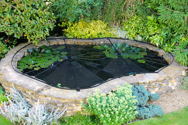 The Best 28 Images Of Decorative Pond Covers Mig Welding Metal Spider Web Mig Welding Forum